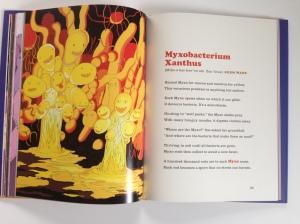 """Blick ins Buch """"Germ Stories"""""""